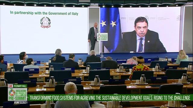 Luis Planas, Plenary Hall
