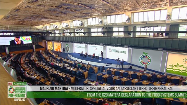 Maurizio Martina, Plenary Hall