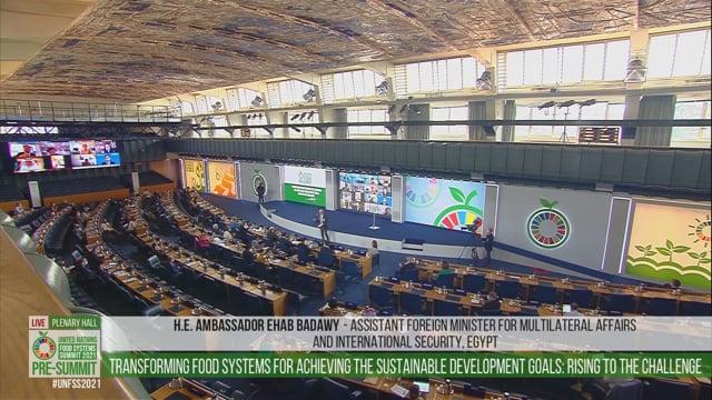 Ehab Badawy, Plenary Hall