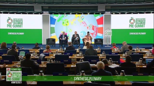 David Nabarro 2, Plenary hall