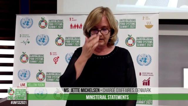 Ms. Jette Michelsen, Chargé d'affaires, Denmark