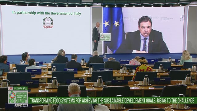 Martien Van Nieuwkoop, Plenary Hall