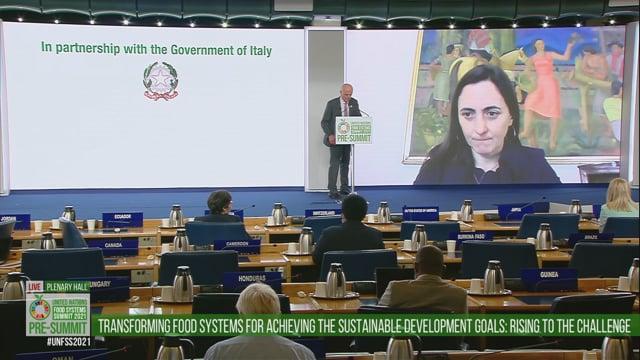 Maria Emilia Undurraga, Plenary Hall