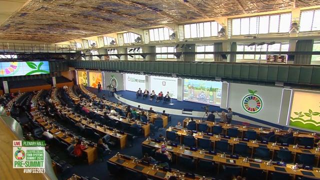 Thales Bevilacqua Mendonca, Plenary Hall