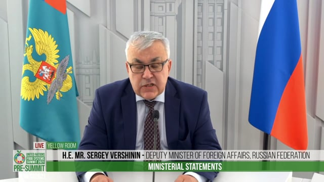 H.E. Mr. Sergey Vershinin, Deputy Minister of Foreign Affairs of the Russian Federation
