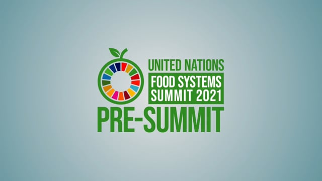 Private Sector Priorities at the UN Food Systems Pre-Summit