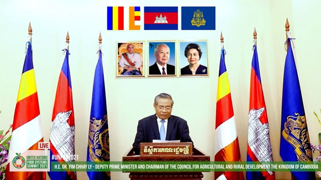 H.E. Dr. Yim Chhay Ly, Deputy Prime Minister and Chairman of the Council for Agricultural and Rural Development, Cambodia