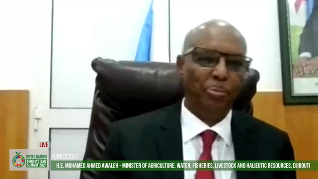 H.E. Mohamed Ahmed Awaleh, Minister of Agriculture, Water, fisheries, Livestock and Halieutic Resources, Republique de Djibouti