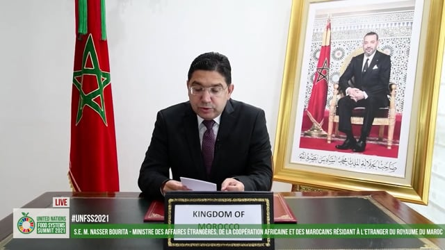 H.E. Nasser Bourita, Minister of Foreign Affairs, African Cooperation and Moroccan Expatriates, Kingdom of Morocco